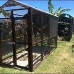 How to Build Your Own Parrot Aviaries