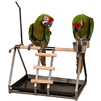 Description: Image result for Other Types of Portable Bird Stands