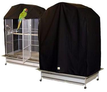 Description: Image result for Try covering the bird's cage at night when it is coldest